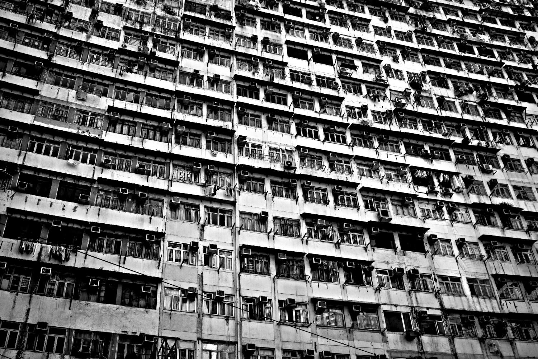 densityjoaotamura_03