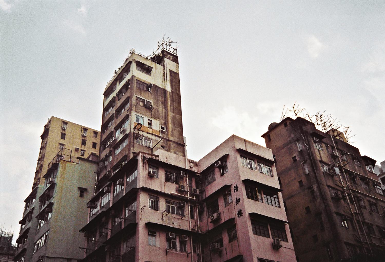 densityjoaotamura_05