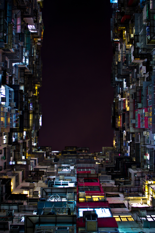 densityjoaotamura_08