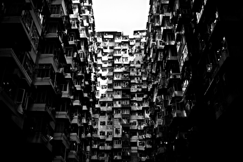 densityjoaotamura_10