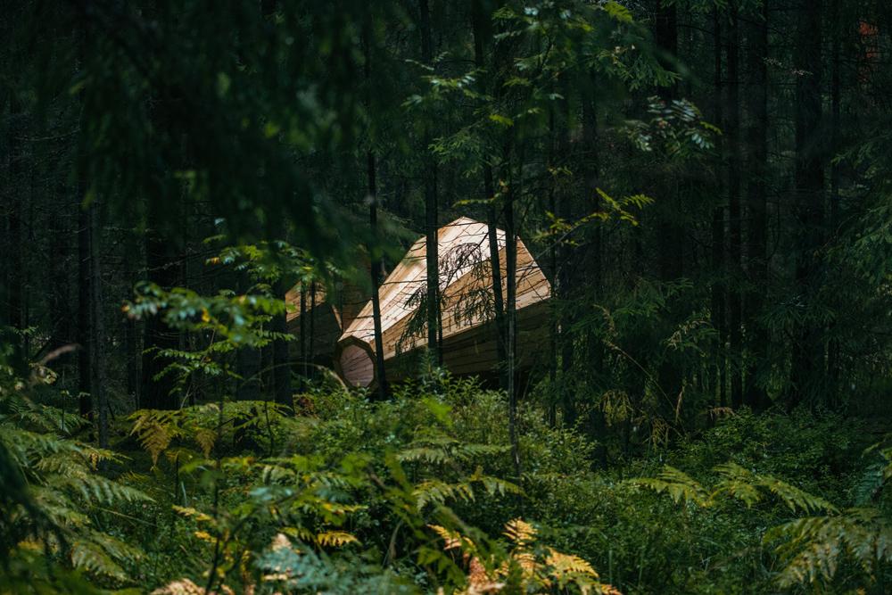 Megafones gigantes para ouvir a floresta