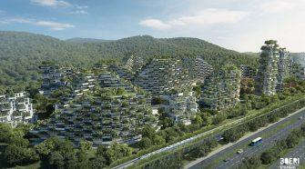 cidade florestal