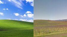 wallpaper Windows XP 20 anos depois