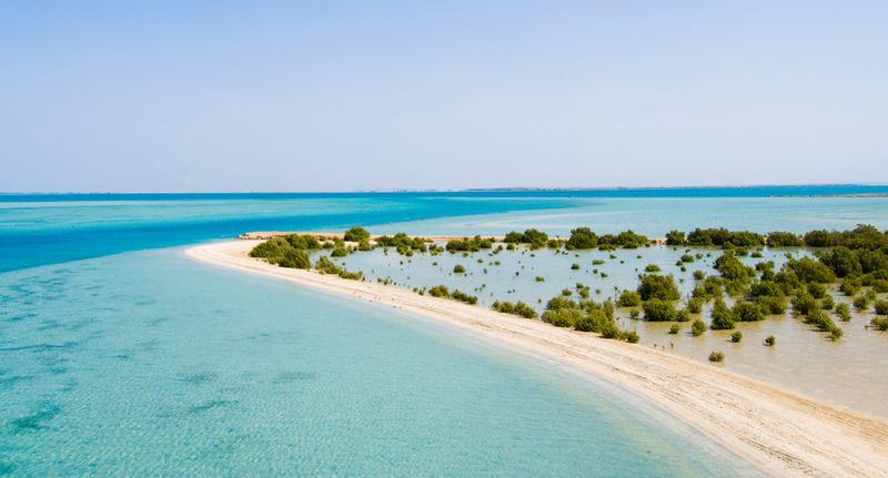 saudi-arabia-farasan-islands-mangroves