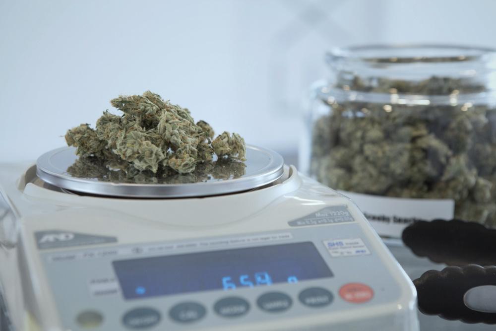 cannabis medicinal Portugal