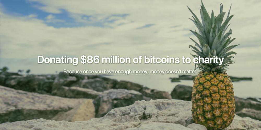 Screenshot: Pineapple Fund