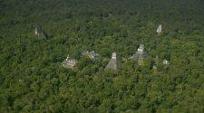 Maias Floresta Guatemala