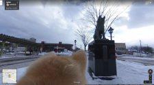 Google Street View cão