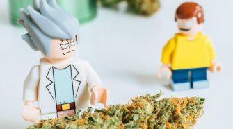 erva LEGO
