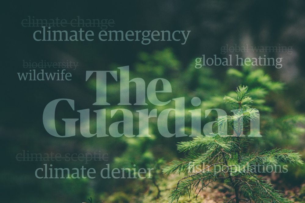 The-Guardian-Ambiente-(Shifter)